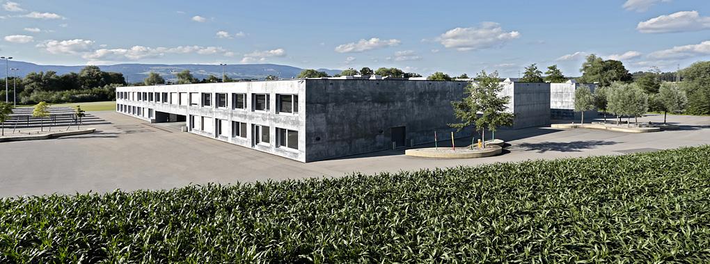 Bildung Einwohnergemeinde Subingen